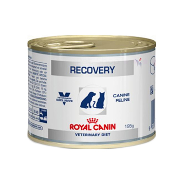 ROYAL CANIN Dog&Cat Recovery 195 GR